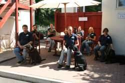Royvon Dog Boarding Kennels Surrey Boarding Kennels in Esher Surrey