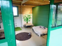 Hayfields Luxury Dog Hotel in Daventry, Warwickshire