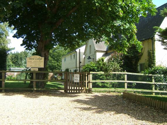 Westlodge Dog Hotel in Cambridgeshire