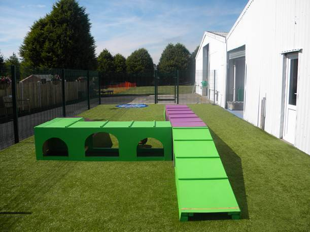 Residential Dog Training Wales